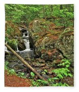 Reany Falls 3 Fleece Blanket