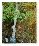 Reany Falls 4548 Fleece Blanket