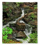 Reany Falls 5 Fleece Blanket