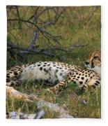 Reclining Cheetah 2 Fleece Blanket