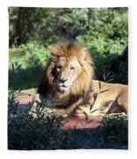 Reclining King Fleece Blanket