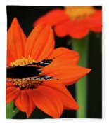 Red Admiral Nectaring On Tithonia Fleece Blanket