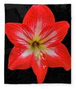 Red Amaryllis Fleece Blanket