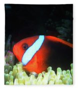 Red And Black Anemonefish, Great Barrier Reef Fleece Blanket