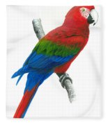 Red And Green Macaw Fleece Blanket