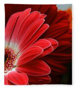 Red And Orange Florals Fleece Blanket