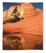 Red And White Reflections In Blue Fleece Blanket