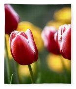 Red And White Tulips Large Canvas Art, Canvas Print, Large Art, Large Wall Decor, Home Decor Fleece Blanket