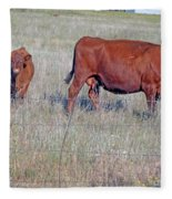 Red Angus Cow And Calf Fleece Blanket