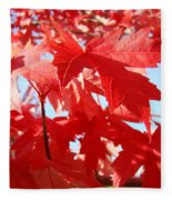 Red Autumn Leaves Art Prints Canvas Fall Leaves Baslee Troutman Fleece Blanket