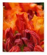 Red Azaleas Orange Azalea Flowers 9 Floral Giclee Art Prints Baslee Troutman Fleece Blanket