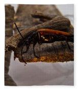 Red Beetle At Twlight Fleece Blanket