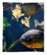 Red Bellied Piranha Fishes Fleece Blanket