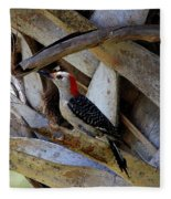 Red-bellied Woodpecker Hides On A Cabbage Palm Fleece Blanket