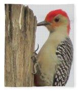 Red-bellied Woodpecker II Fleece Blanket