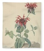 Red Bergamot In A Landscape, Aert Schouman Surroundings Of, C. 1750 - C. 1775 Fleece Blanket