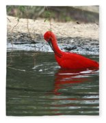 Red Bird Fleece Blanket