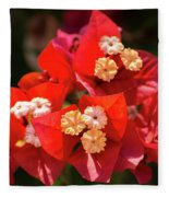Red Bougainvillea  Fleece Blanket