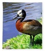 Red Breasted Wood Duck Fleece Blanket