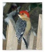 Red Breasted Woodpecker On Fence Fleece Blanket