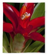 Red Bromiliad Fleece Blanket
