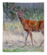 Red Bucks 1 Fleece Blanket