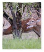Red Bucks 5 Fleece Blanket