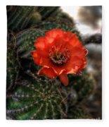 Red Cactus Flower  Fleece Blanket