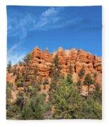 Red Canyon Tableau Fleece Blanket