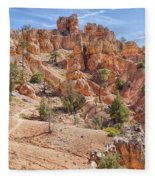 Red Canyon Trail Fleece Blanket