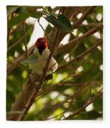 Red-capped Cardinal Digital Oil Fleece Blanket