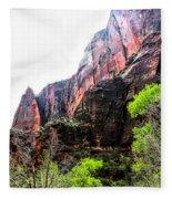 Red Cliffs Zion National Park Utah Usa Fleece Blanket