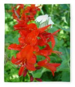 Red Crocosmia Lucifer Fleece Blanket