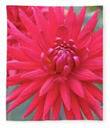 Red Dahlia Delight Fleece Blanket