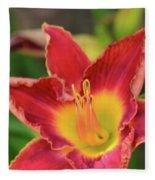 Red Daylily Fleece Blanket