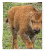 Red Dog Bison In Yellowstone Fleece Blanket