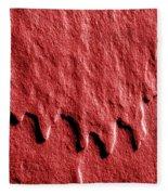 Red Edge Fleece Blanket