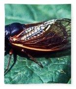 Red Eyed Cicada Fleece Blanket