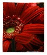 Red Floral Fleece Blanket