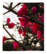 Red Flowers At Sunset Fleece Blanket