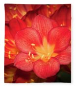 Multiple Red Flowers In Bloom Fleece Blanket