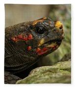 Red-footed Tortoise Fleece Blanket