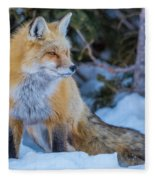 Red Fox At Dawn In Winter Fleece Blanket