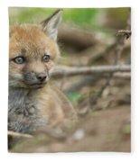 Red Fox Kit Fleece Blanket