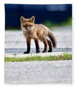 Red Fox Kit On Road Fleece Blanket