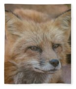Red Fox Portrait Fleece Blanket
