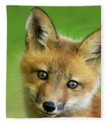 Red Fox Pup Fleece Blanket