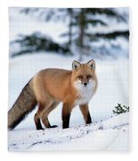 Red Fox Vulpes Vulpes Portrait Fleece Blanket
