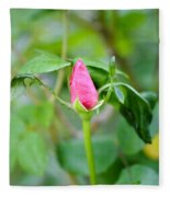 Red Garden Rose Bud Fleece Blanket