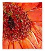 Red Gerbera Daisy Fleece Blanket